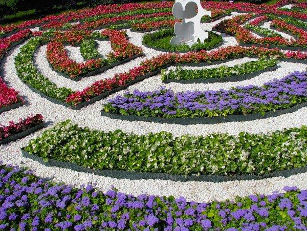 Устройство лабиринта из растений
