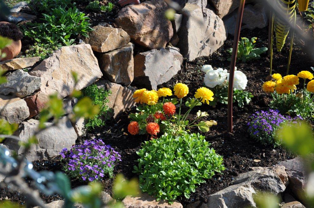 нем альпинарий в саду фото контактная